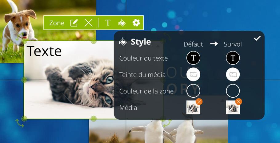 fr_zc_style_window.JPG (126 KB)