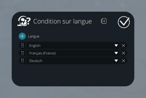 fr_langcondition_params.jpg (35 KB)