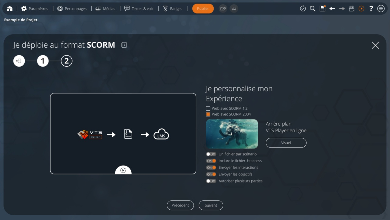 fr_publish_scorm.jpg (110 KB)